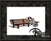 Dark| Park Bench