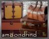 AM:: Luggage Enhancer