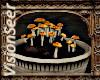 Alchemy Mushrooms 2