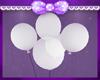 Niver Balões Brancos