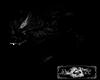 Big wolf black
