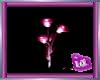 (IA)GLOWROSE (PINK)