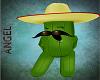 Senior Cactus