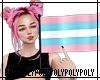 2020 Pride Trans Flag F