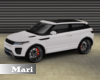 !M! Range Rover Custom