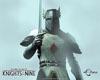 Hero sword poses