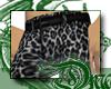 d Silver Leopard Pants