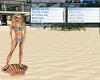 Beach Seashell Radio