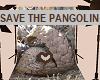 SAVE THE PANGOLIN