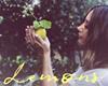 Lemons, Ashley Tisdale