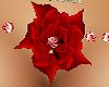 redrose & diamond