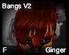 Ginger Bangs V2