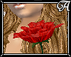 !A! Red Rose
