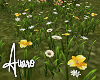 Forest Flowers Patch