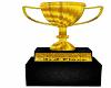 3rd pl Hair Show Trophy