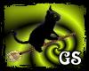 [GS] Simon on a broom