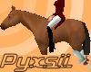 Bay Horse (furniture)