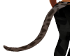 Leopard Tail 2
