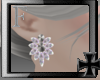 Queenly ^ Earrings M