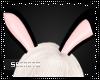 {S} Bunny Ears [B]