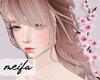 🌸 Chinese Velvet