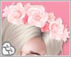 LL* Blush Flower Crown