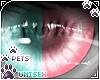 [Pets] Jura   eyes 2-T