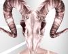 Cherry Ram Skull