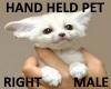 Hand Held Fox