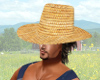 Farmer's Straw Hat