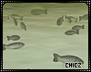 Cz!!Animated fishes
