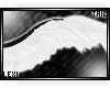 x: Veni Tail v1