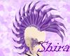 Purple Mimosa Hawk