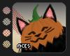 !A Cat Pumpkin