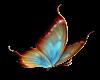 ~SB Butterfly 1
