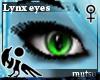 [Hie] Mutsu lynx eyes F