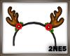 [2NE5]Reindeer 02