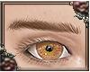 [brows] Cinder Straight