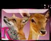 *R* Deer & Fox Enhancer