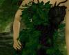 Dryad ~ Tree Lady