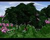~S~ Tree Swing