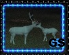 """GS"" COUPLE WHITE DEER"