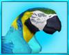 Tropical Bird Pet