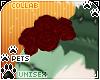 [Pets]Frankie|shldrroses