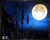 ST: Indigo Cat Tails