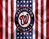 Washington NationalsFlag