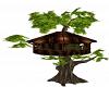 Cat's Tree House