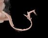 Drage |Tail