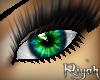 !R  Phenomenon VIVID