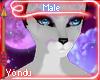 Y- Emi Male Fur